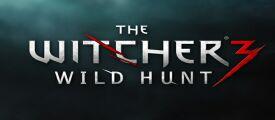 О незаконном заработке игроков The Witcher 3 узнала налоговая служба
